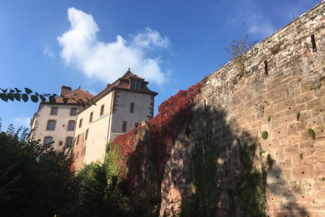 Château de la Petite-Pierre Parc Naturel Régional des Vosges du Nord